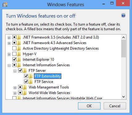 internet information services for windows 8